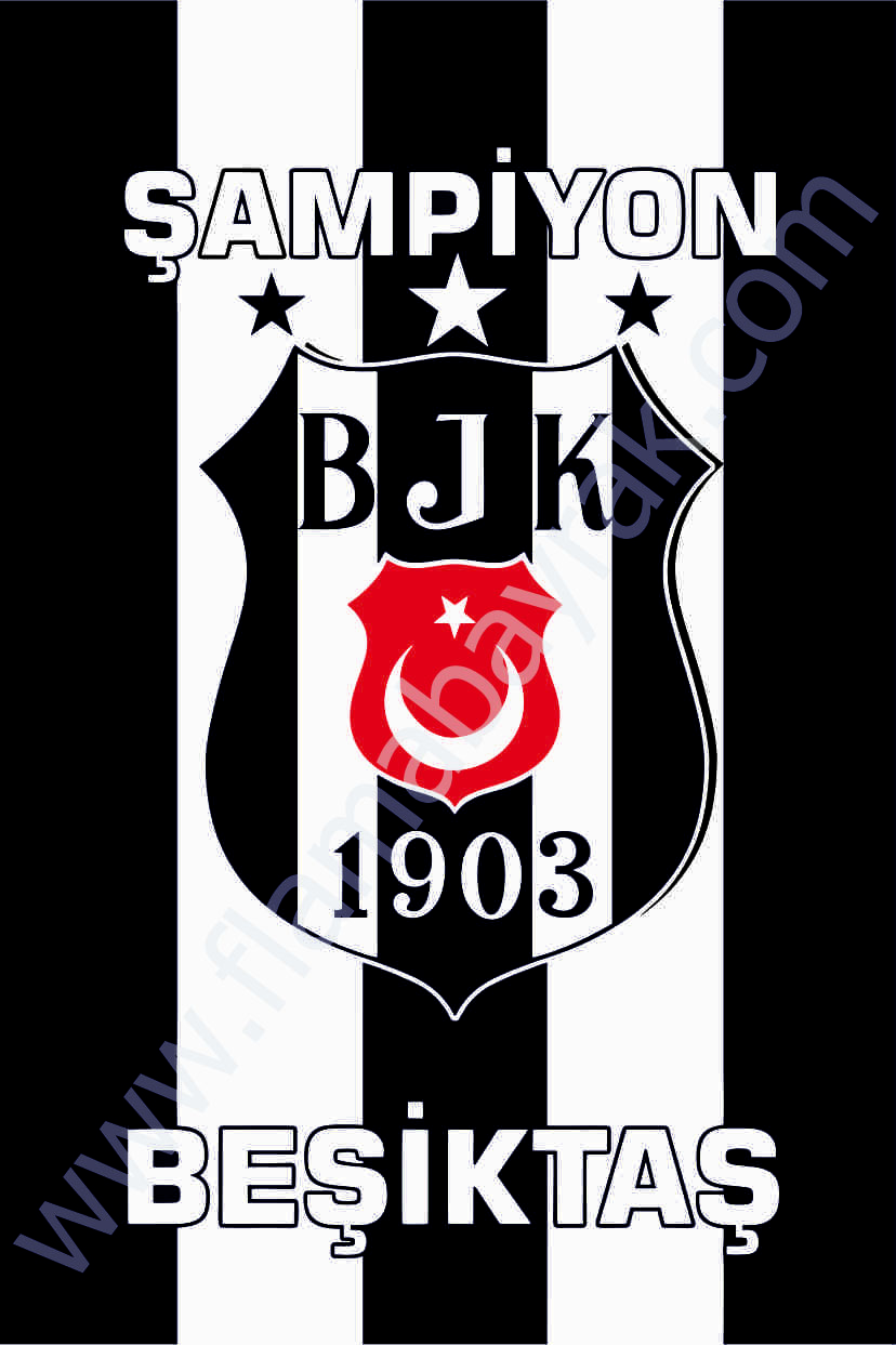 BE%C5%9E%C4%B0KTA%C5%9E 5 Beşiktaş Takım Bayrağı