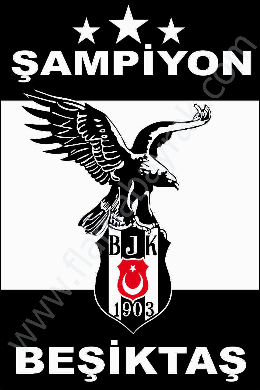 BE%C5%9E%C4%B0KTA%C5%9E 8 Beşiktaş Takım Bayrağı